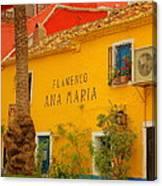 Flamenco Ana Maria Canvas Print