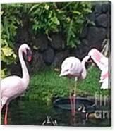 Flamingo Party Canvas Print