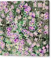 Fleurs De Nuit Canvas Print