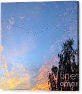 Flight Into The Sunset Canvas Print