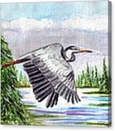 Flight Of Fantasy Canvas Print