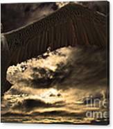 Flight Of The Brown Pelican Canvas Print