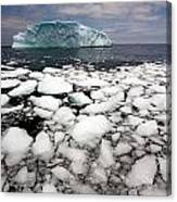 Floating Ice Shattered From Iceberg Canvas Print