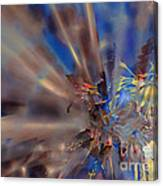 Floral ...  Abstract  Canvas Print