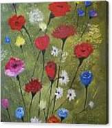Floral Fields Canvas Print