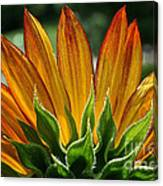 Floral Flaming Fingers Canvas Print
