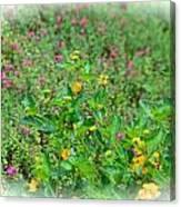 Floral Gardens Canvas Print