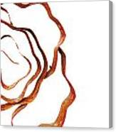 Floral Rust Canvas Print