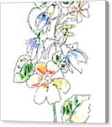 Floral Watercolor Paintings 4 Canvas Print