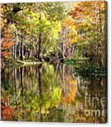 Florida Autumn Secret Canvas Print