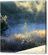 Florida Frosty Morning Canvas Print