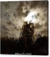 Florida Night Shadows  Canvas Print