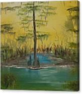 Florida Swamp Canvas Print
