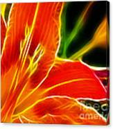 Flower - Lily 1 - Abstract Canvas Print