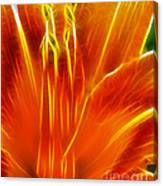 Flower - Orange - Abstract Canvas Print