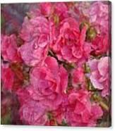 Flower 290 Canvas Print