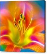 Flower 30 Canvas Print