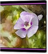 Flower 4 Canvas Print