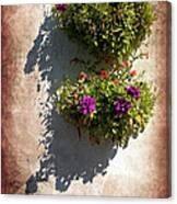 Flower Baskets Canvas Print