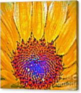 Flower Child - Flower Power Canvas Print