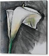 Flower In Bloom - Los Angeles Canvas Print