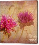Flower Memories Canvas Print