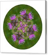 Flower Of Scotland Canvas Print