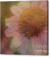 Flower Paper Canvas Print