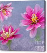 Flower Triplets Canvas Print