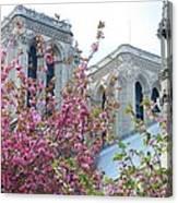 Flowering Notre Dame Canvas Print