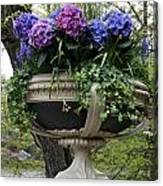 Flowerpot With Hydrangea Canvas Print