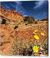 Flowers And Canyons Canvas Print