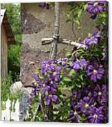 Flowers On The Garden Wall Canvas Print