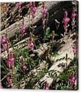 Flowery Log Canvas Print
