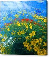 Flowery Sky Canvas Print