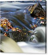 Flowing River IIi Canvas Print