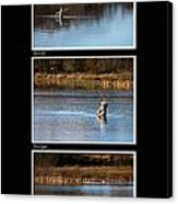 Fly Fishing Triptych Black Background Canvas Print