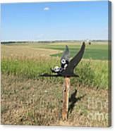 Flying Baby Pandas. North Dakota. Canvas Print