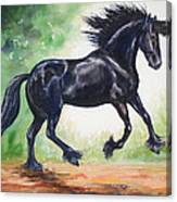 Flying Friesian Canvas Print