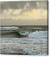 Flying Over The Waves Canvas Print