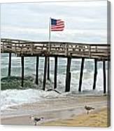 Flying Proudly Canvas Print