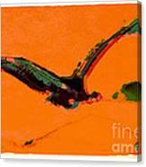 Flying Zone Canvas Print