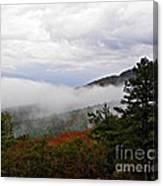 Fog And Foliage Canvas Print