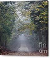 Fog Road Canvas Print
