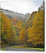Foggy Autumn Day Canvas Print