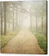 Foggy Forest Canvas Print