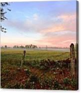 Foggy Morning Field Canvas Print