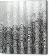 Foggy Silver Mountain Range Canvas Print