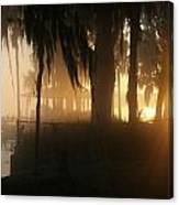 Foggy Sunrise 2 Canvas Print