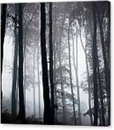 Foggy Woods Ireland Canvas Print